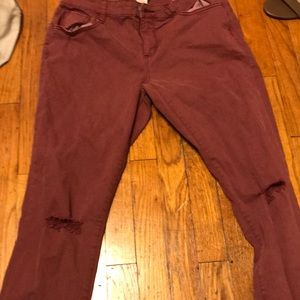 BURGUNDY JEGGINS